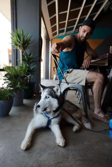 lost friend brewing dogs