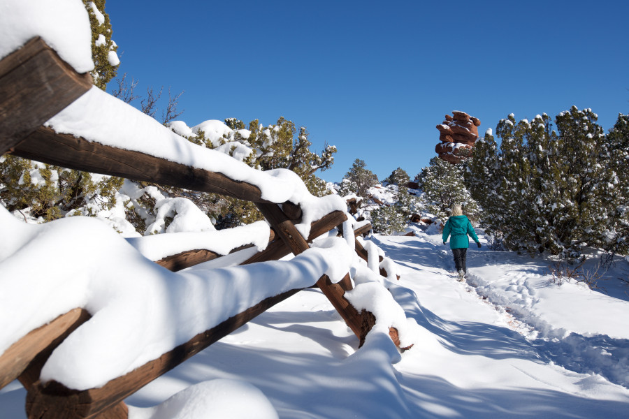 snowshoeing co springs