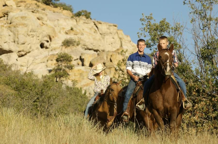 Horseback Riding In Colorado Springs Visit Colorado Springs