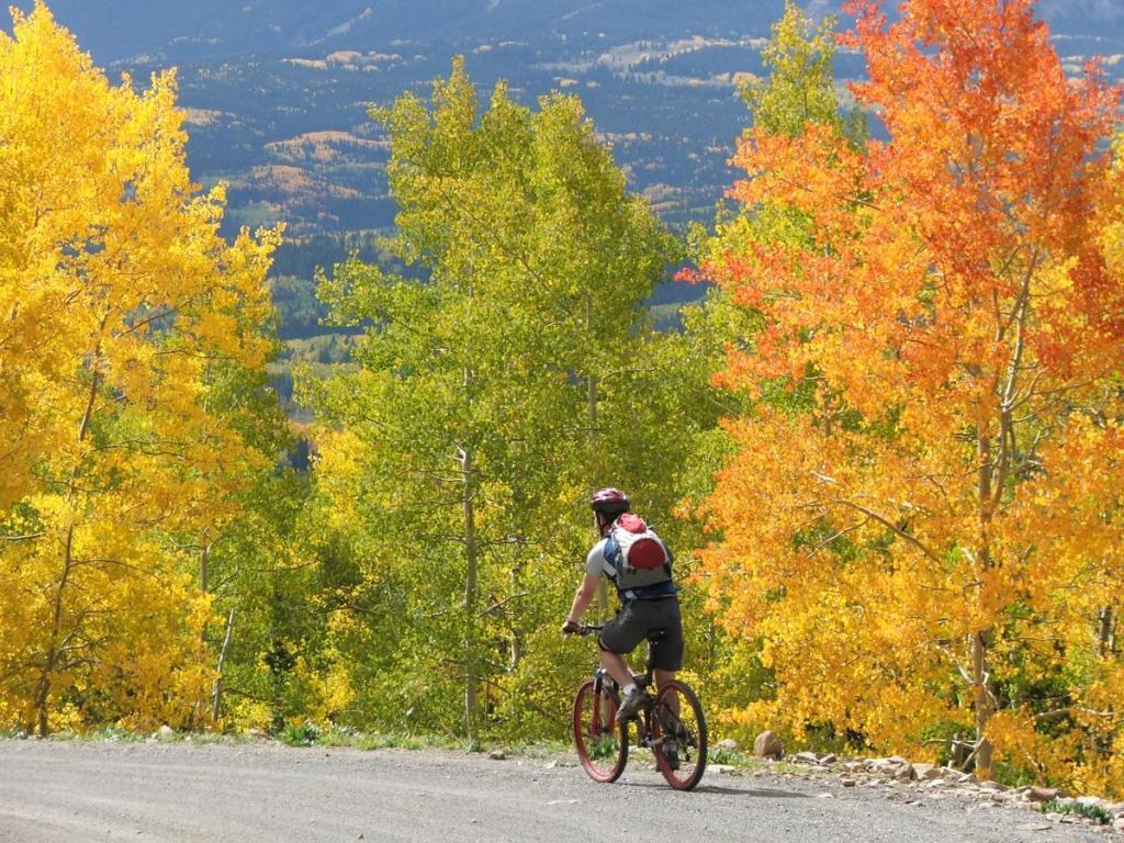 Top 5 Fall Activities In Colorado Springs - Visit Colorado Springs