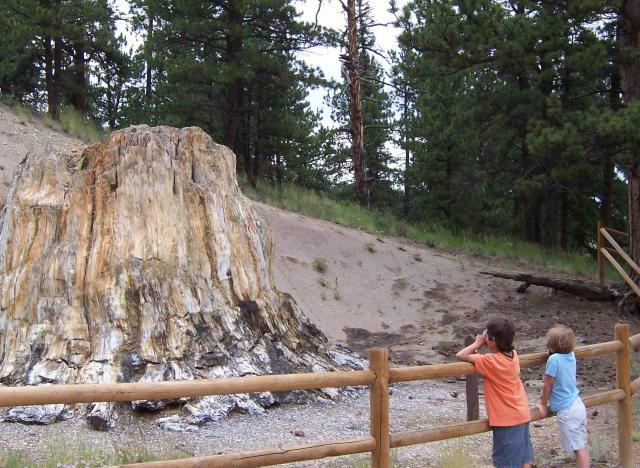 dc1b00ac2056 Top 10 Reasons to Visit Florissant Fossil Beds National Monument ...