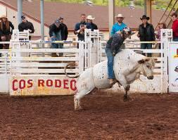 Colorado Springs Summer Rodeo Series