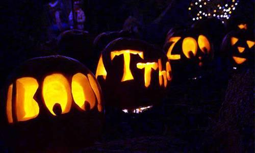halloween events in colorado springs - Halloween Stores Colorado Springs