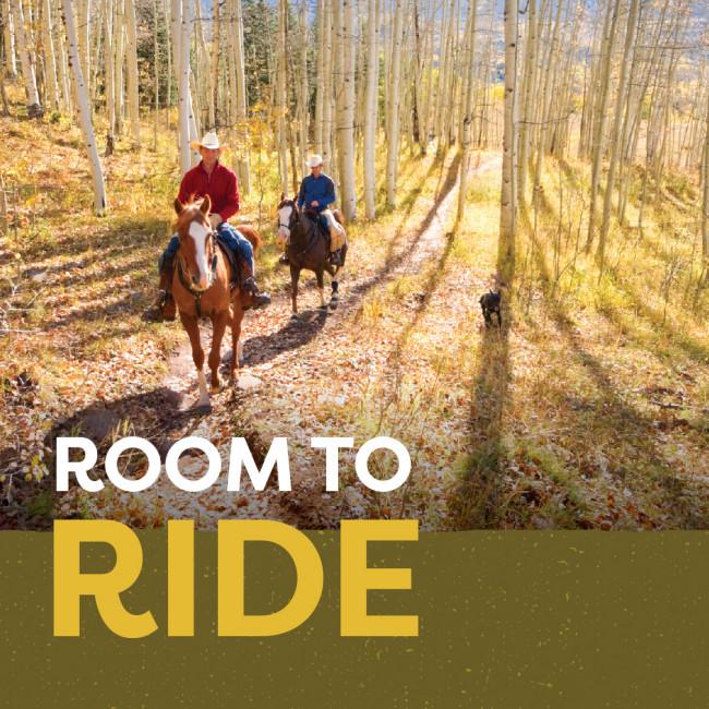 horsebackriding in aspen grove Colorado Springs