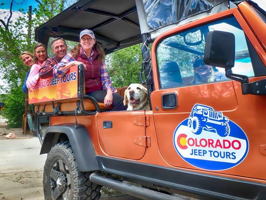 dog on colorado jeep tour