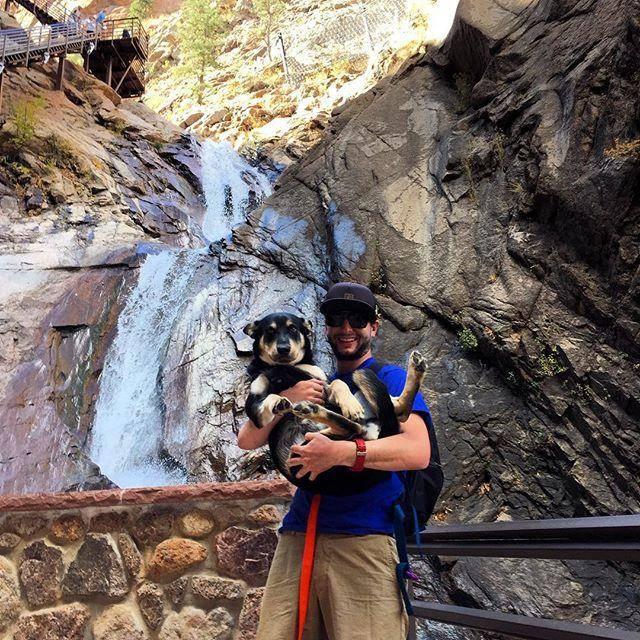 Dog on Seven Falls