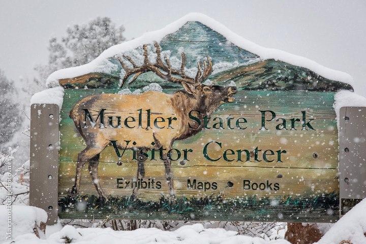 Mueller State Park Visitor Center